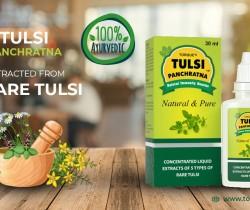 benefits of tulsi for immunity